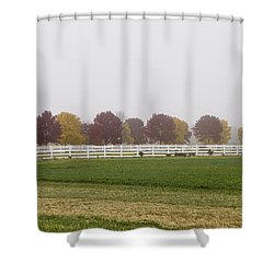 Foggy Fall Shower Curtain by Joel Witmeyer