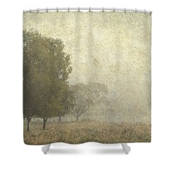Foggy Morning. Trossachs National Park. Scotland Shower Curtain by Jenny Rainbow