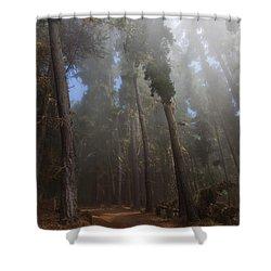 Foggy Poli Poli Shower Curtain by Jenna Szerlag