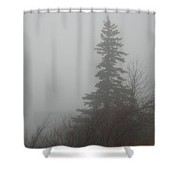 Foggy Sentinel Shower Curtain by Skip Willits