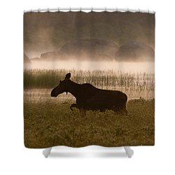 Foggy Stroll Shower Curtain