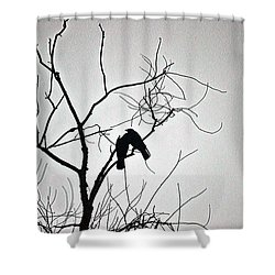 Folie A Deux Shower Curtain