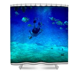 Shower Curtain featuring the photograph Follow Me  by Danielle  Parent
