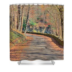 Follow The Path Shower Curtain by Kathleen Struckle