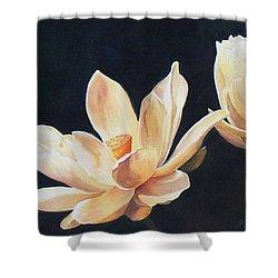 Follow The Sun  Sold  Print Available Shower Curtain