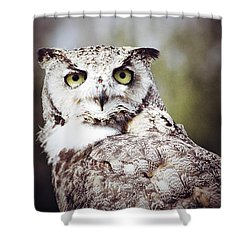 Followed Owl Shower Curtain by Empty Wall