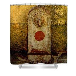Fontaine D'eau Shower Curtain by Lainie Wrightson