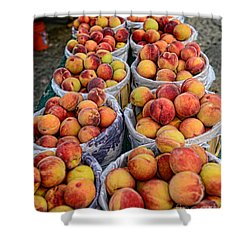 Food - Harvested Peaches Shower Curtain by Paul Ward