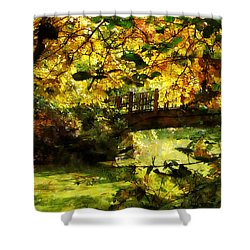 Foot Bridge Shower Curtain by Susan Savad