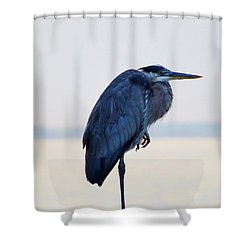 Foot Rest Shower Curtain