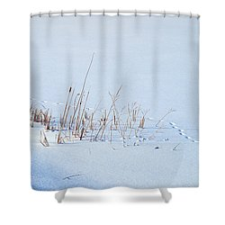 Footprints On Snow Shower Curtain by Paul Ge