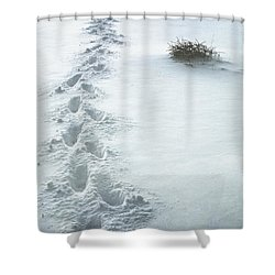 Footsteps In The Snow Shower Curtain