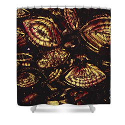 Foraminiferous Limestone Lm Shower Curtain by M. I. Walker