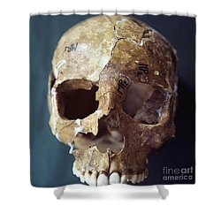 Forensic Evidence, Skull Reconstruction Shower Curtain by Science Source