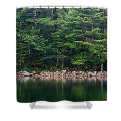Forest At Jordan Pond Acadia Shower Curtain by Steve Gadomski