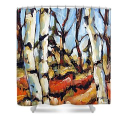 Forest Edge By Prankearts Shower Curtain by Richard T Pranke