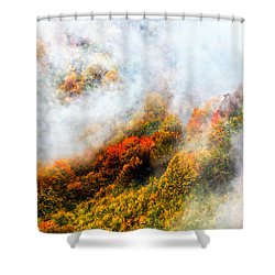 Forest In Veil Of Mists Shower Curtain by Evgeni Dinev