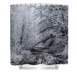 Shower Curtain featuring the photograph Forest Lace by Christian Mattison