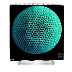 Fossil Diatom, Sem Shower Curtain by Ted Kinsman