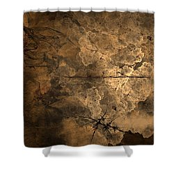 Fossilite Shower Curtain by Christopher Gaston