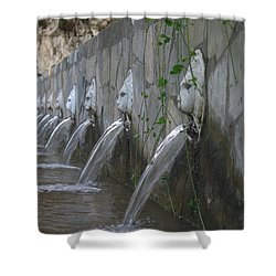 Shower Curtain featuring the photograph Fountain by David Gleeson