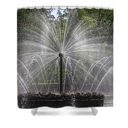 Fountain  Peterhof Palace  St Petersburg   Russia Shower Curtain by Clare Bambers