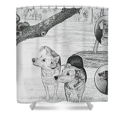 Four Dogs And A Squirrel Shower Curtain