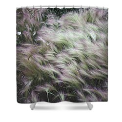 Foxtail Barley And Campion Shower Curtain