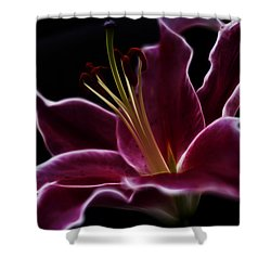 Fractal Lily Petals Shower Curtain