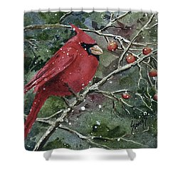 Franci's Cardinal Shower Curtain