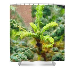 Frankincense Tree Leaves Shower Curtain