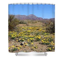 Franklin Mt. Poppies Shower Curtain by Kurt Van Wagner