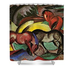 Franz Marc  Shower Curtain by Three Horses