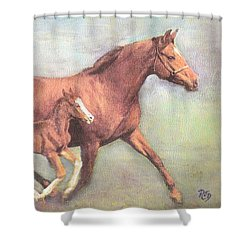 Free And Fleet As The Wind Shower Curtain