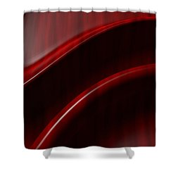 Free Form  Shower Curtain by Richard Rizzo