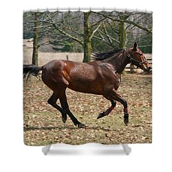Shower Curtain featuring the photograph Free Spirit by Davandra Cribbie