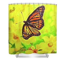 Shower Curtain featuring the drawing Free To Fly by Beth Saffer