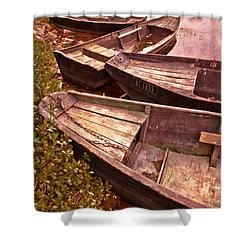 French Antiques Shower Curtain by Debra and Dave Vanderlaan