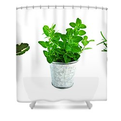 Fresh Herbs Shower Curtain by Elena Elisseeva