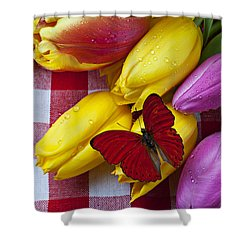 Fresh Tulips And Red Butterfly Shower Curtain by Garry Gay