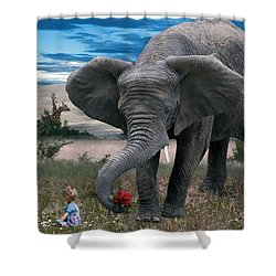 Friends Shower Curtain by Bill Stephens