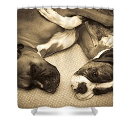 Friendship Embrace Shower Curtain by DigiArt Diaries by Vicky B Fuller