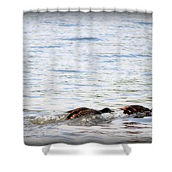 Shower Curtain featuring the photograph Frolicking Fun by Kathy  White