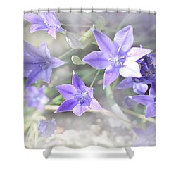 From My Garden Shower Curtain by Kume Bryant