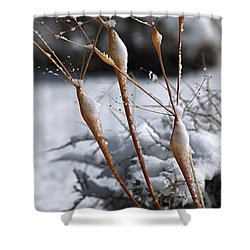 Frosted Trumpets Shower Curtain by Joe Schofield