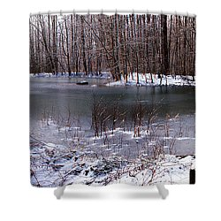 Shower Curtain featuring the photograph Frozen Head Pond by Paul Mashburn