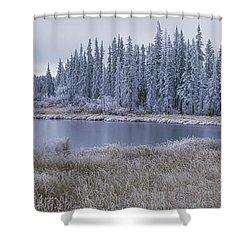 Frozen Swampland, Near 100 Mile House Shower Curtain by David Nunuk