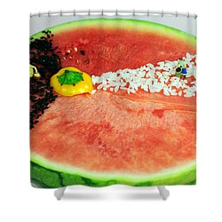 Fruits Depicting Kepler's Law Shower Curtain by Paul Ge