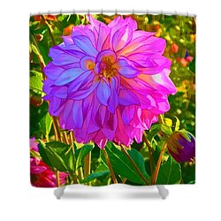 Fuchsia Delight Shower Curtain by Ken Stanback