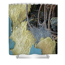Shower Curtain featuring the photograph Fuzzy Notion by Newel Hunter